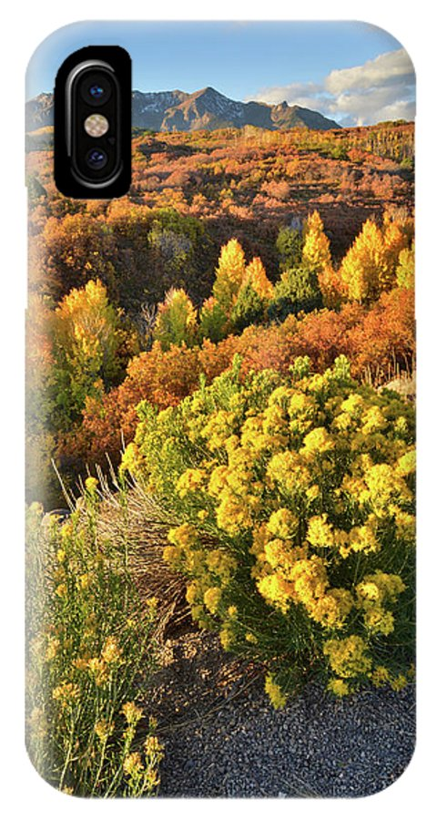 Colorado IPhone X Case featuring the photograph Early Morning At Dallas Divide by Ray Mathis
