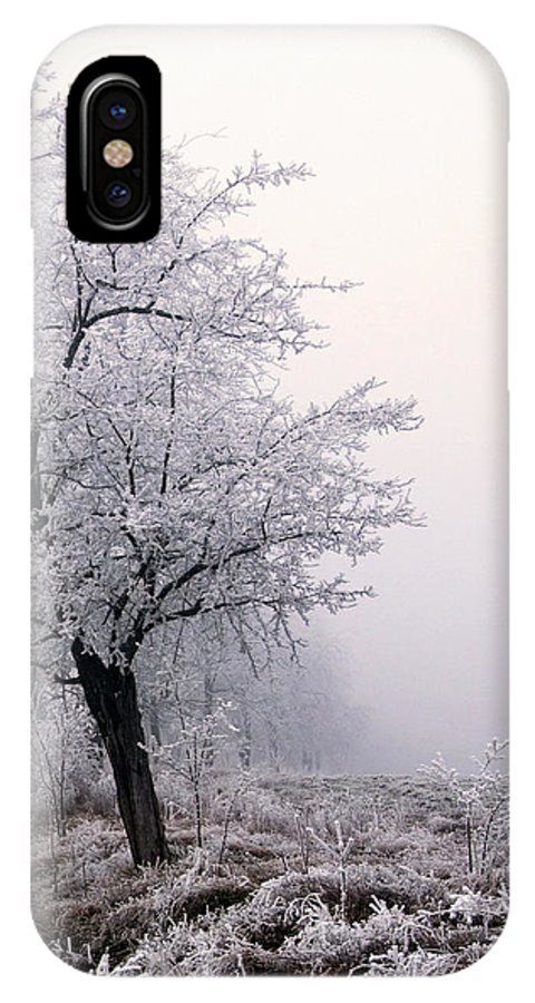 Frost IPhone X Case featuring the photograph Early Morning Frost by Cliff Norton