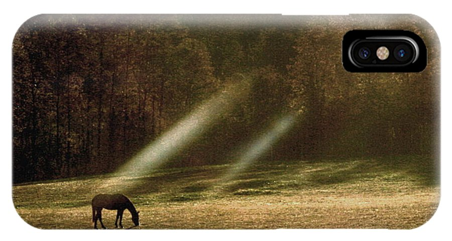 Grazing Horse IPhone X Case featuring the photograph Early Morning Grazing by Diane Merkle