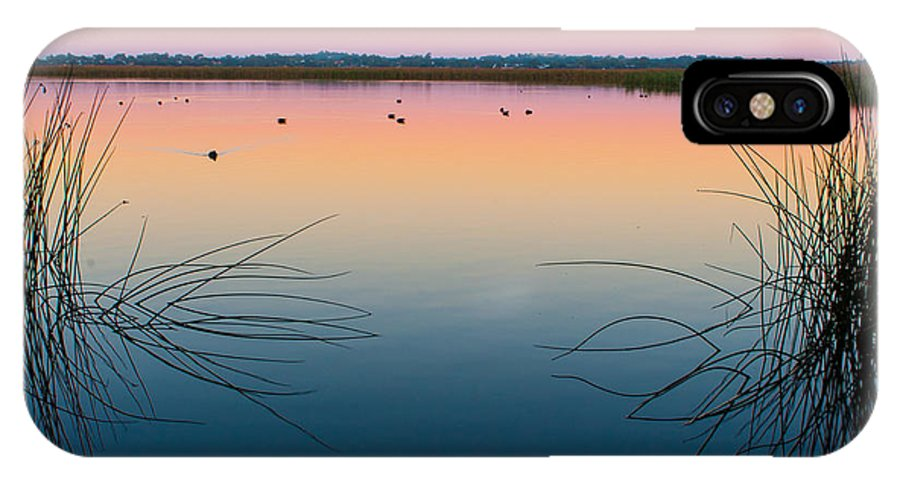 Ducks IPhone X Case featuring the photograph Early Morning Lake by George Harris