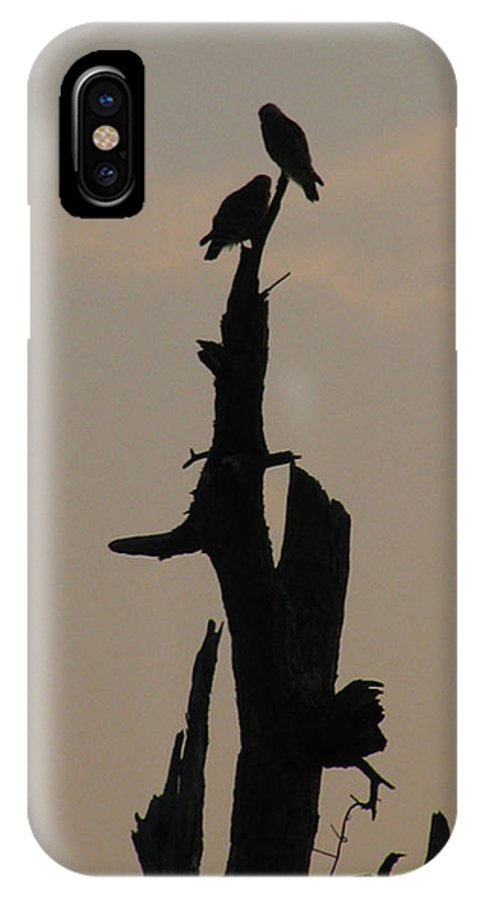 Dead Tree IPhone X Case featuring the photograph Early Morning Silhouette by Donna Brown