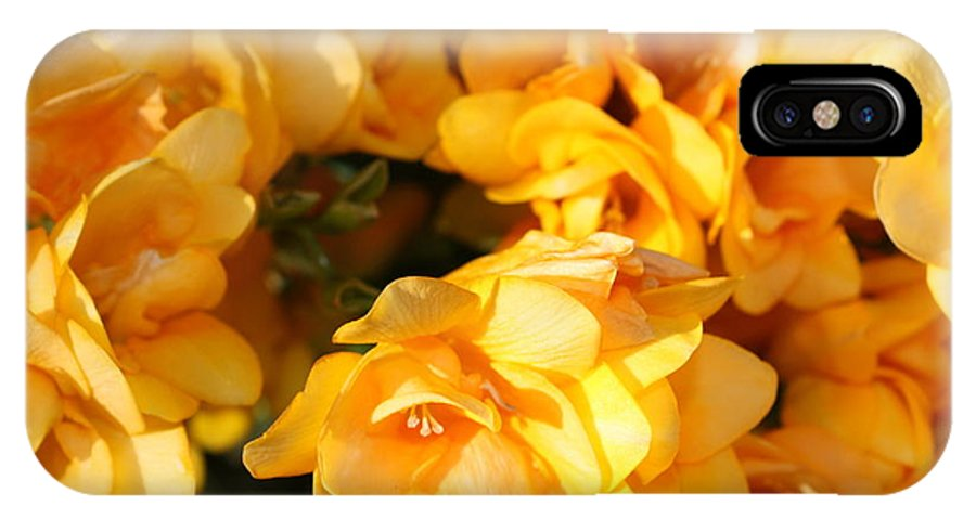 Spring Garden IPhone X Case featuring the photograph Easter Beauties by Carol Groenen