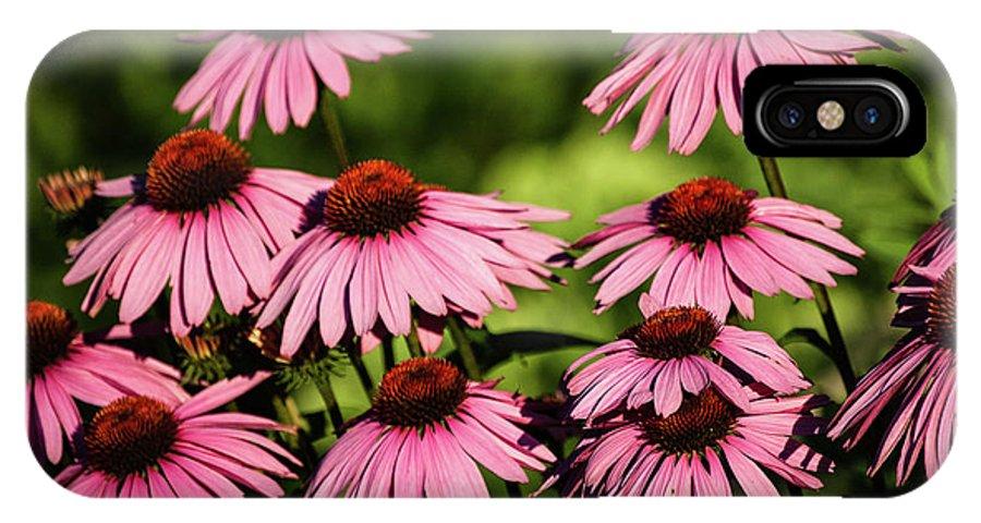 Echinacea IPhone X Case featuring the photograph Echinacea by Faith Harron Boudreau