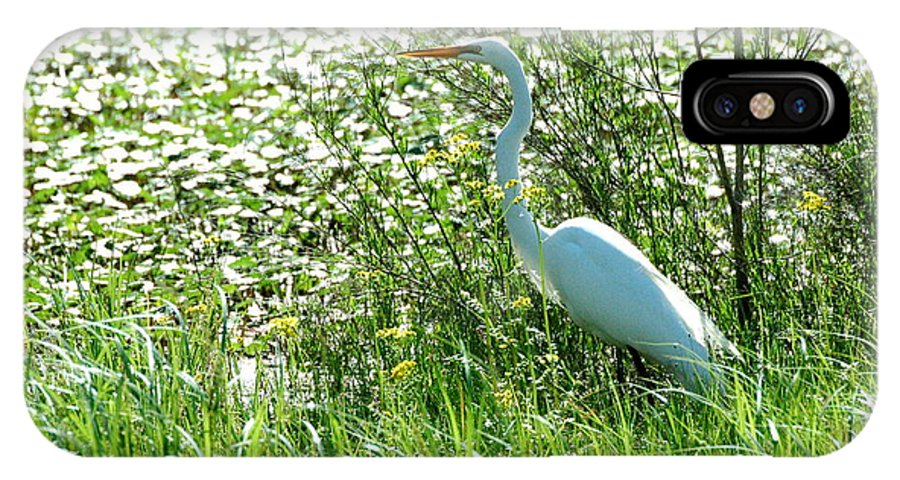 Teresa Blanton IPhone X Case featuring the photograph Egret In Flowers by Teresa Blanton