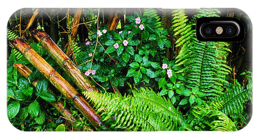 Puerto Rico IPhone X / XS Case featuring the photograph El Yunque National Forest Ferns Impatiens Bamboo by Thomas R Fletcher