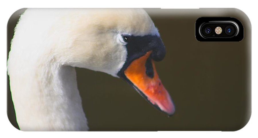 Swan IPhone X Case featuring the photograph Elegance by Diane Merkle