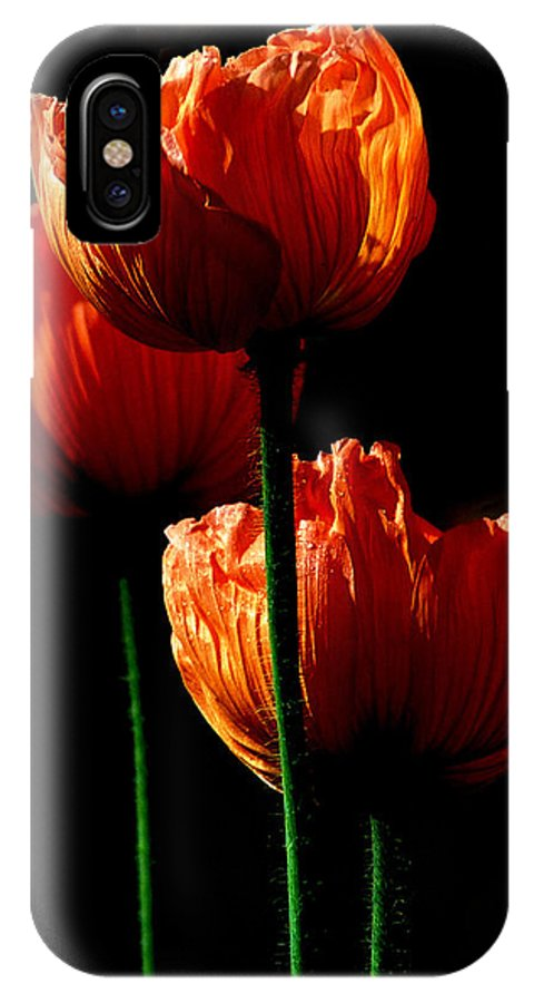 Photograph IPhone X Case featuring the photograph Elegance by Stephie Butler