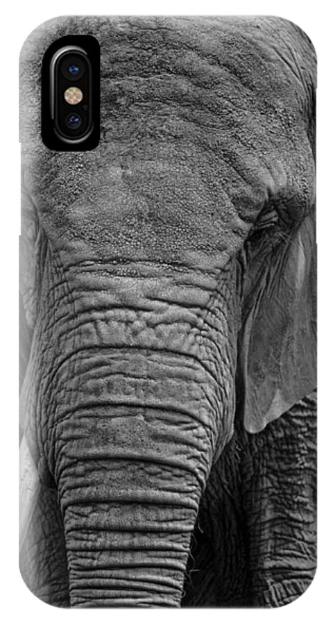 Elephant IPhone X / XS Case featuring the photograph Elephant In Black And White by Matt Plyler