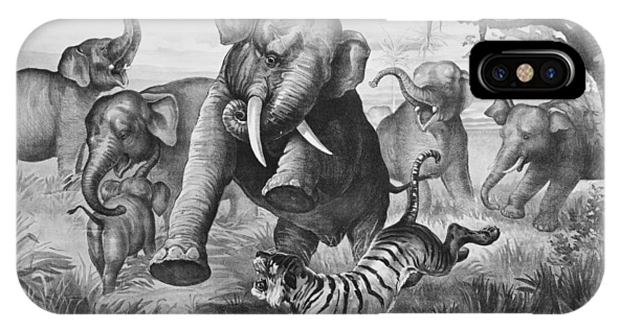 1890 IPhone X Case featuring the photograph Elephants And Tiger, 1890 by Granger