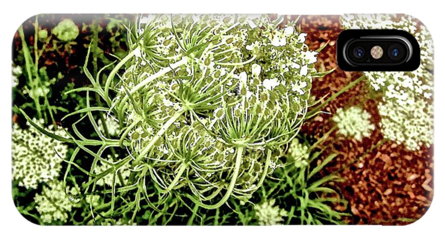 Queen Anne's Lace IPhone X Case featuring the photograph Emergence 3 by Elizabeth Tillar