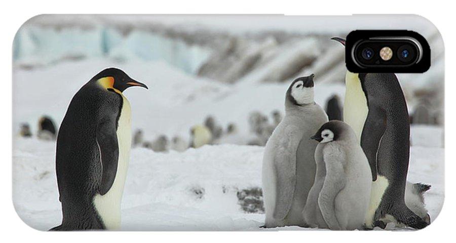 Penguin IPhone X Case featuring the photograph Emperor Penguin Landscape by Bruce J Robinson