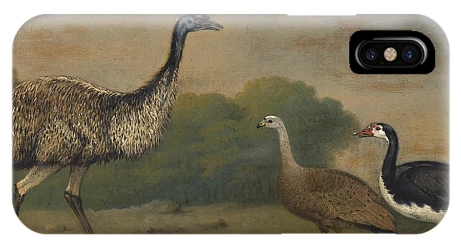 19th Century Art IPhone X Case featuring the painting Emu, Cape Barren Goose And Magpie Goose by Henry Bernard Chalon