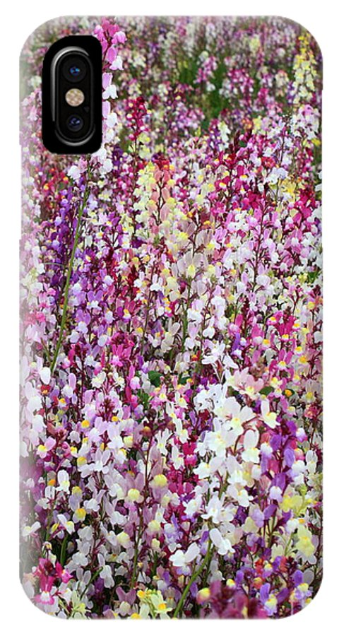Colorful Flowers IPhone X Case featuring the photograph Endless Field Of Flowers by Carol Groenen