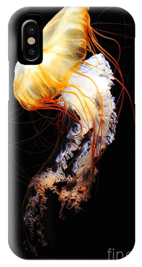 Animal IPhone X Case featuring the photograph Enigma by Andrew Paranavitana