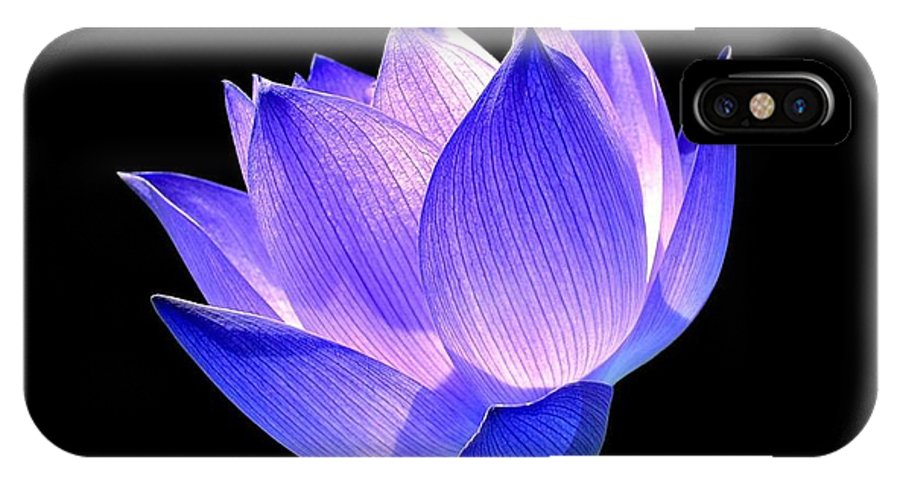 Flower IPhone X Case featuring the photograph Enlightened by Jacky Gerritsen