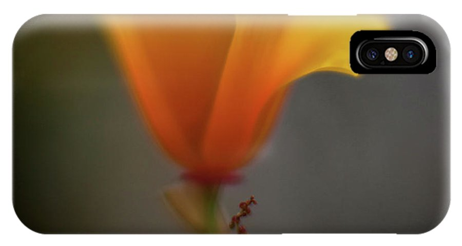 Poppy IPhone X / XS Case featuring the photograph Ephemeral Poppy by Mike Reid