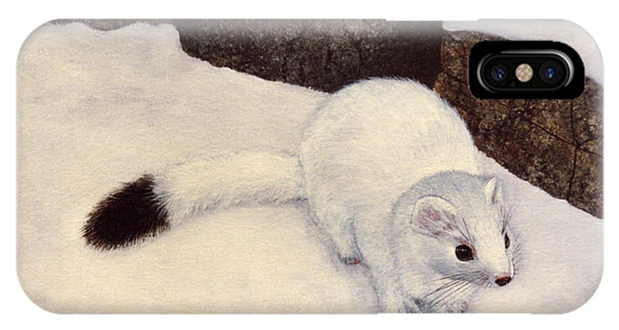 Wildlife IPhone X Case featuring the painting Ermine In Winter by Frank Wilson
