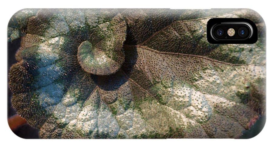 Escargot IPhone X Case featuring the photograph Escargot Begonia by Anna Lisa Yoder