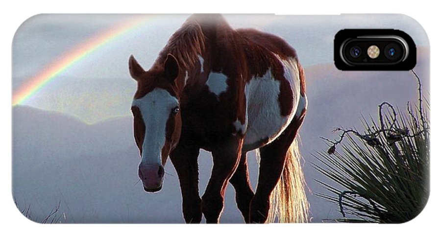 Horses IPhone X Case featuring the mixed media Evening Promise by Bill Stephens