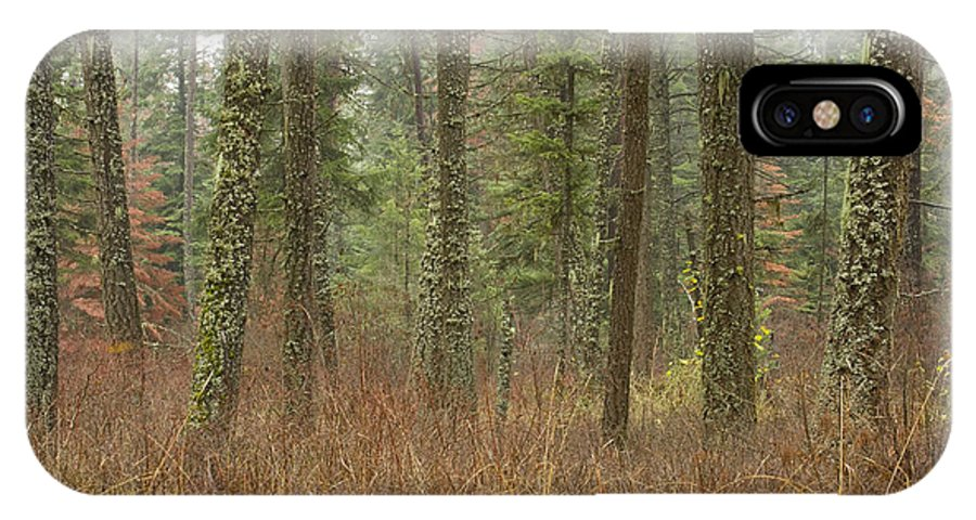 Fir IPhone X Case featuring the photograph Evergreen Fog by Idaho Scenic Images Linda Lantzy