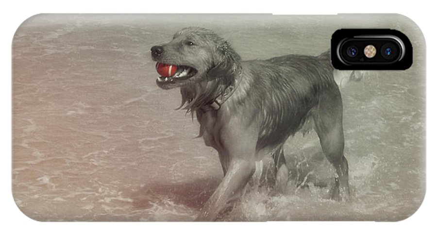 Dog IPhone X Case featuring the photograph Everyones Best Friend by JAMART Photography