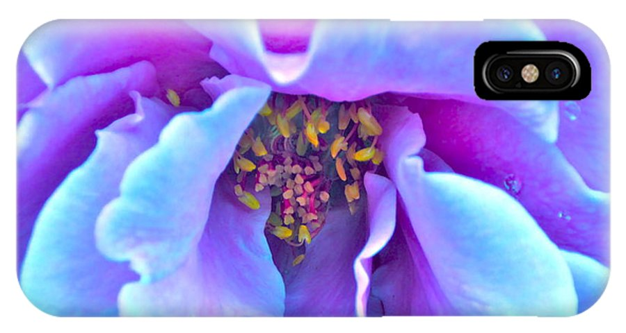 Photograph Of Rose IPhone X Case featuring the photograph Exotic Dancer by Gwyn Newcombe