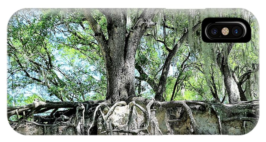 Oak IPhone X Case featuring the photograph Exposed - Oak Roots by Diann Fisher