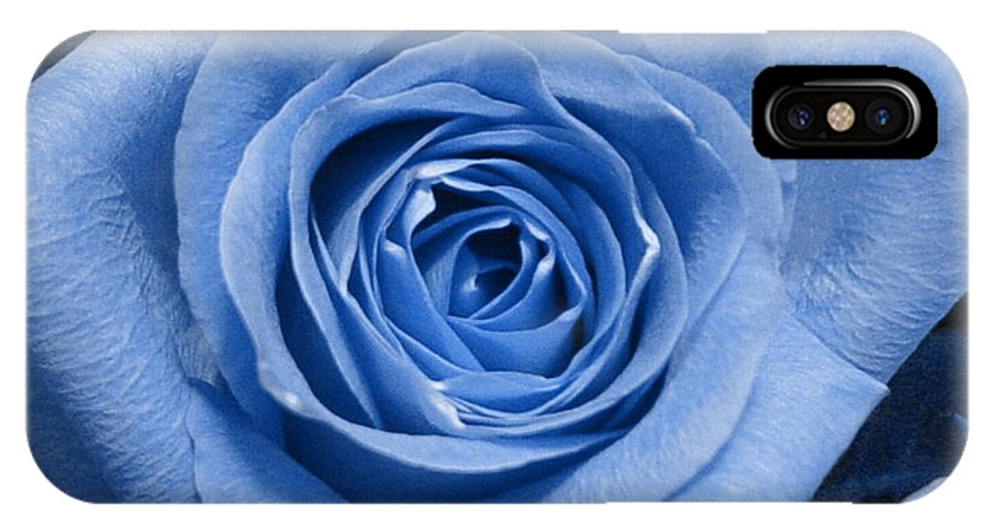 Rose IPhone X Case featuring the photograph Eye Wide Open by Shelley Jones