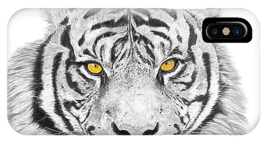 Tiger IPhone Case featuring the drawing Eyes Of The Tiger by Shawn Stallings