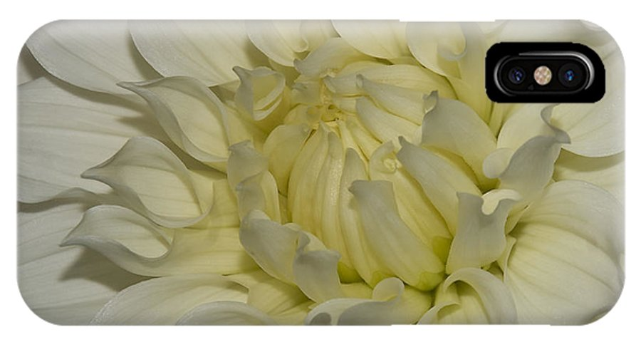 White IPhone X Case featuring the photograph Fade To White by Mark Wiley