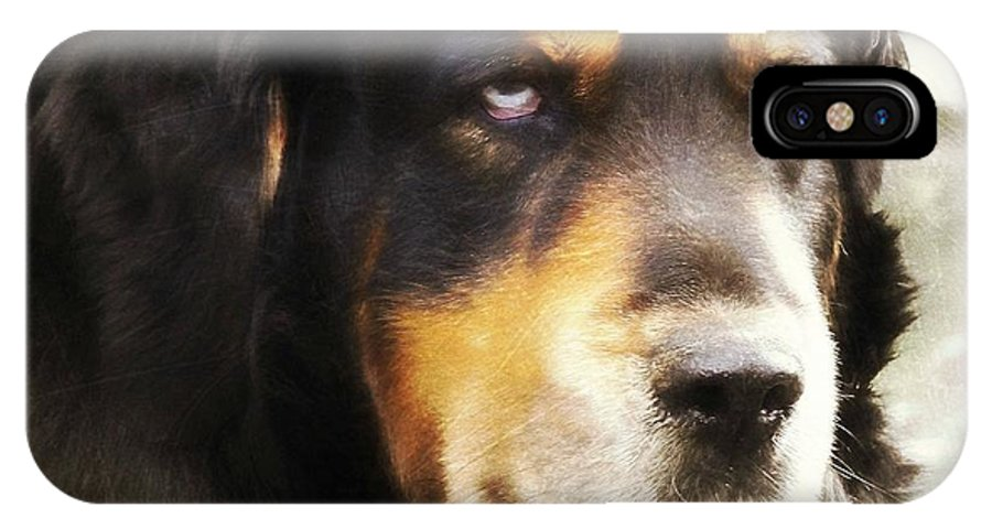 Dog IPhone X Case featuring the photograph Faithful by JAMART Photography