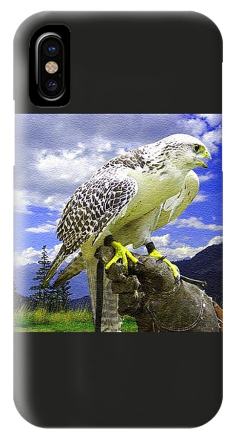 Rural IPhone X Case featuring the painting Falcon Being Trained H B by Gert J Rheeders