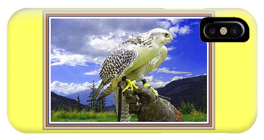 Rural IPhone X Case featuring the painting Falcon Being Trained H B With Decorative Ornate Printed Frame. by Gert J Rheeders
