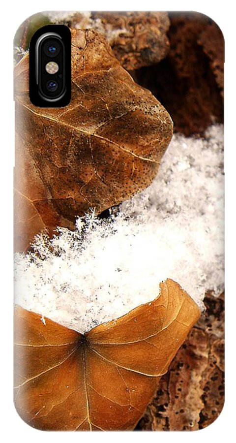 Fall IPhone X Case featuring the photograph Fall And Winter by Gaby Swanson