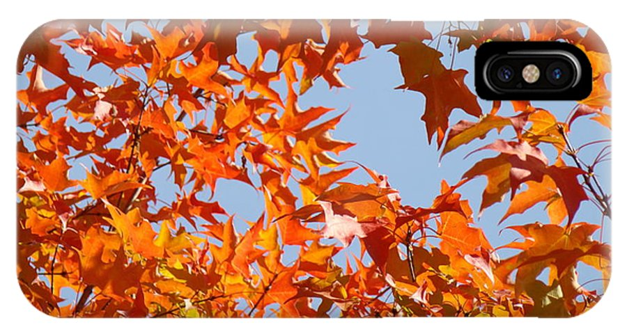 Autumn IPhone X Case featuring the photograph Fall Art Prints Orange Autumn Leaves Baslee Troutman by Baslee Troutman