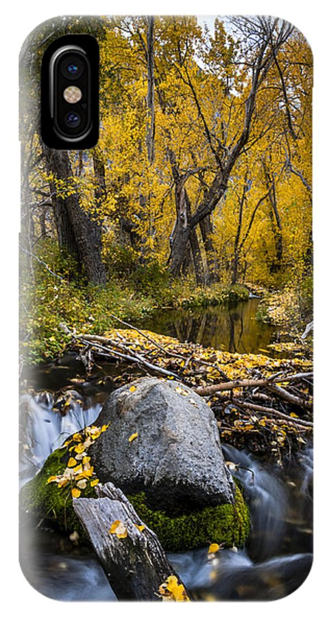 Fall IPhone X Case featuring the photograph Fall At Mcgee Creek by Cat Connor