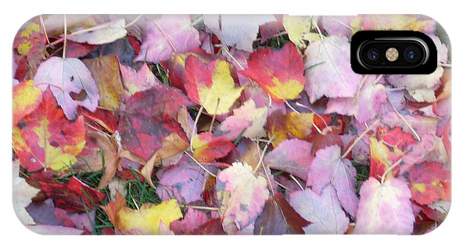 IPhone X Case featuring the photograph Fall Carpet by Karin Dawn Kelshall- Best