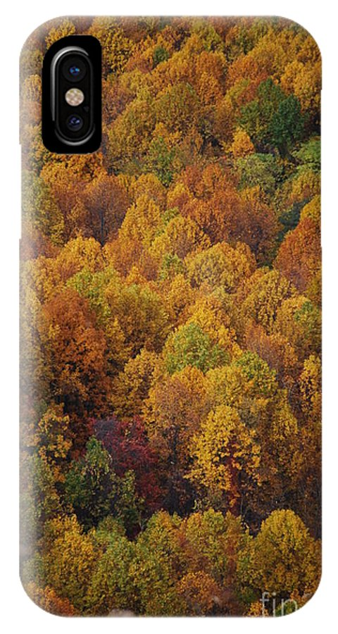 Fall IPhone X Case featuring the photograph Fall Cluster by Eric Liller