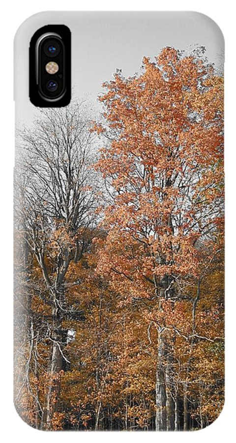 Landscape IPhone X Case featuring the photograph Fall Colors by Dylan Punke