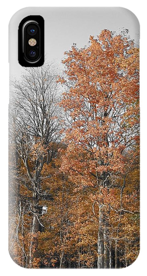 Landscape IPhone X / XS Case featuring the photograph Fall Colors by Dylan Punke
