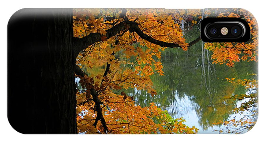 Tree IPhone X Case featuring the photograph Fall Day At The Lake by David Arment