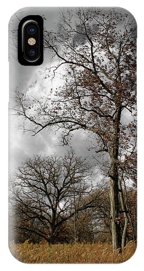 Autumn IPhone X Case featuring the photograph Fall by Dylan Punke