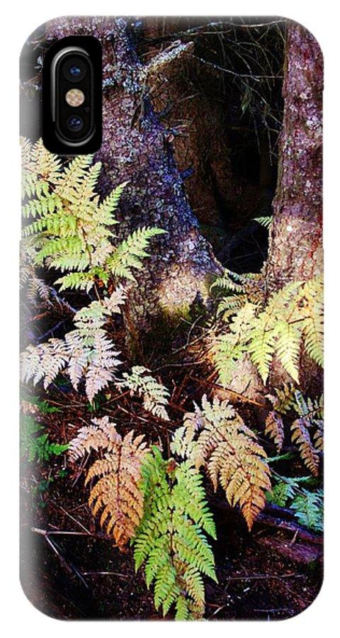 Alaskan Ferns In Autumn IPhone X Case featuring the photograph Fall Ferns by Lori Mahaffey