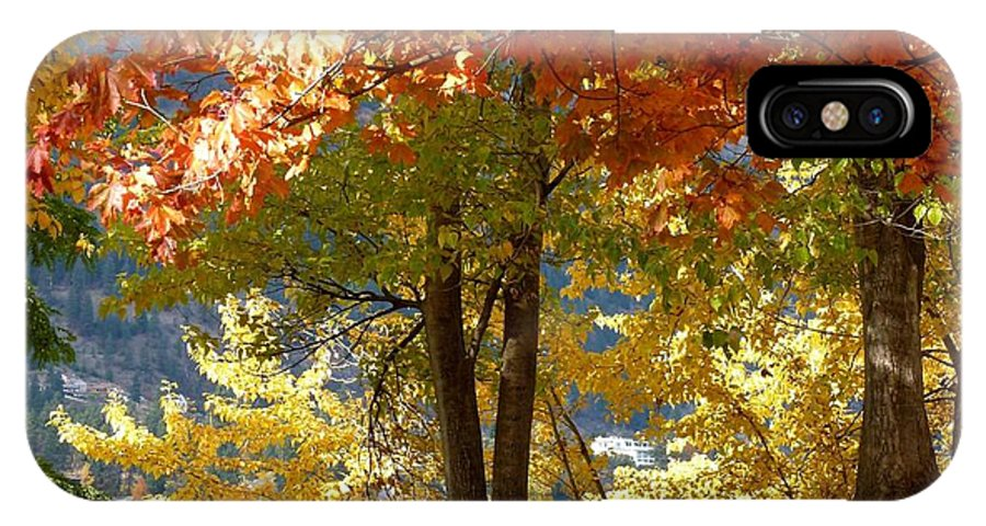 Kaloya Park IPhone X Case featuring the photograph Fall In Kaloya Park 4 by Will Borden