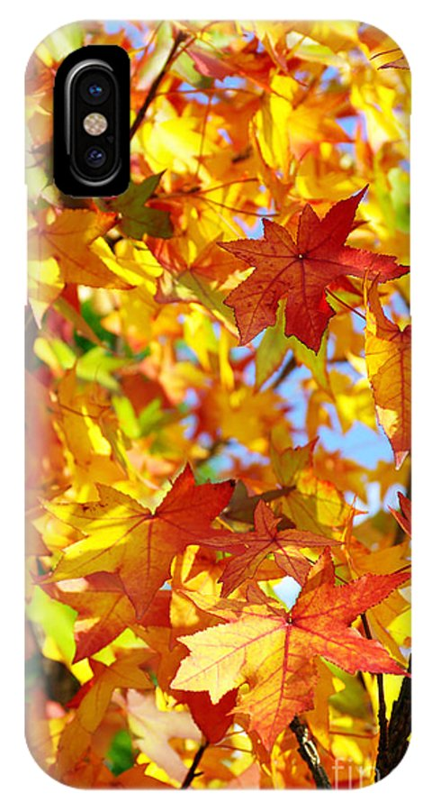 Autumn IPhone X Case featuring the photograph Fall Leaves Background by Carlos Caetano