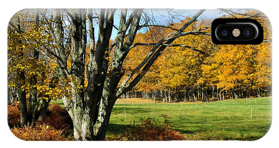 Trees IPhone X Case featuring the photograph Fall Pasture by Tim Nyberg