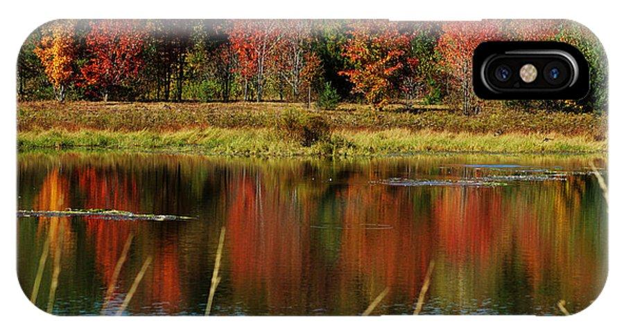 Autumn IPhone X Case featuring the photograph Fall Splendor by Linda Murphy