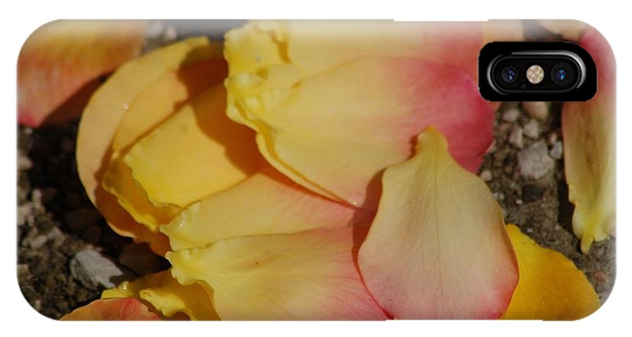 Petals IPhone X Case featuring the photograph Fallen by Cynthia Bowen