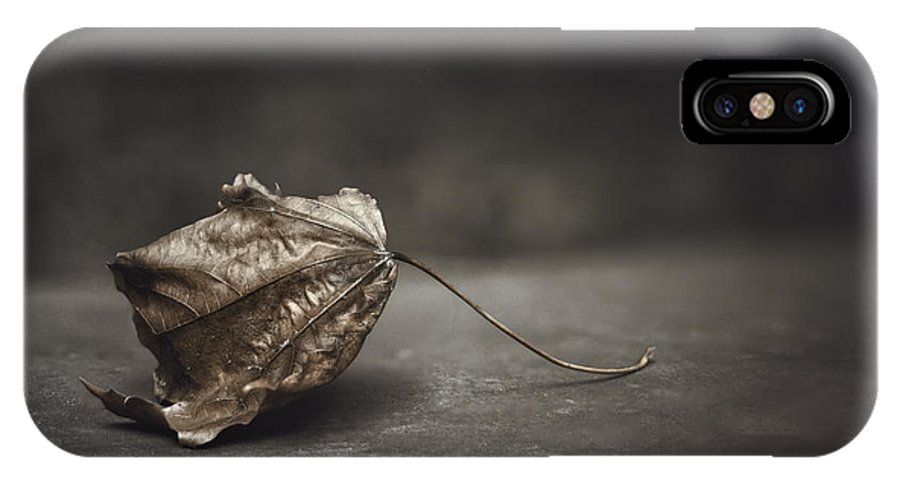 Maple IPhone X Case featuring the photograph Fallen Leaf by Scott Norris