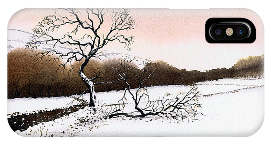 Winter IPhone Case featuring the painting Fallen Tree Stainland by Paul Dene Marlor